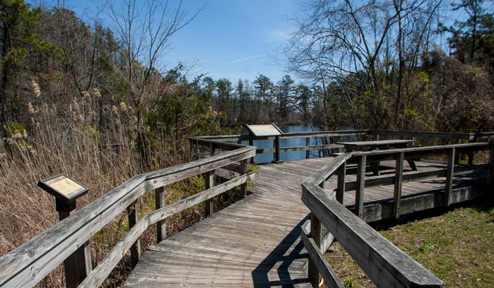 Eno's Pond County Park - 28 Acres - Lacey Township