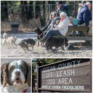 Ocean County Parks | Ocean County Government